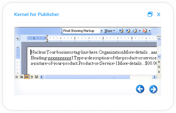 Have a detailed preview of the selected Publishers file data.