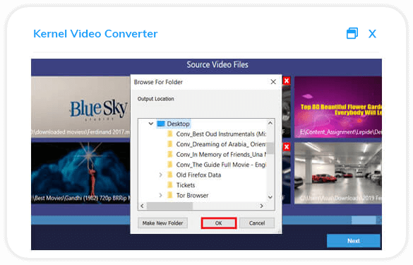 Choose the video format for conversion