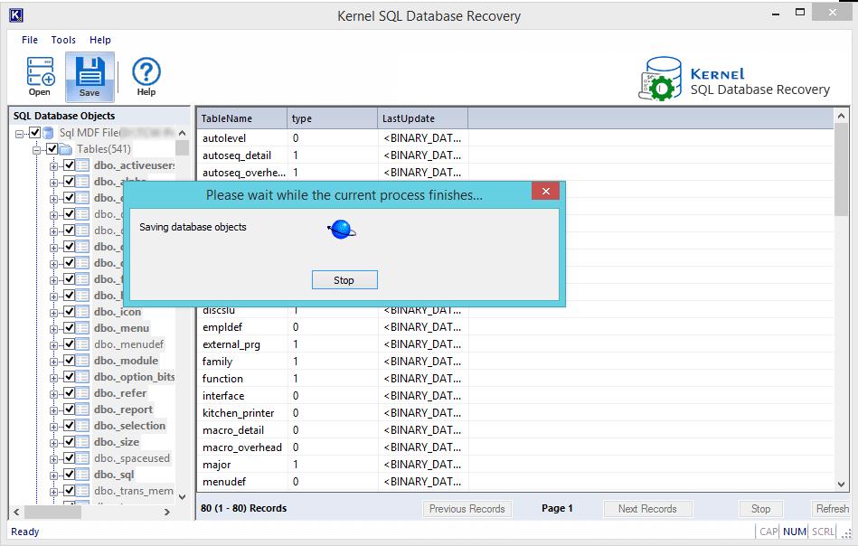 Saving database objects